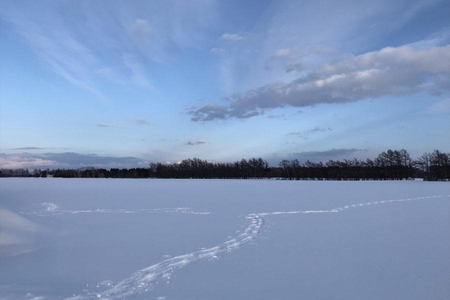 どこまでも続く雪原